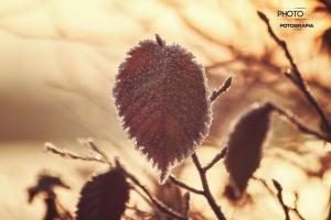 fotograf-Szczecin-00013